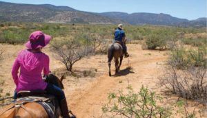 Women in pink sunhat and pink sweater rides a horse in the arizona desert shortly behind another man on a horse in a blue shirt and cowboy style hat